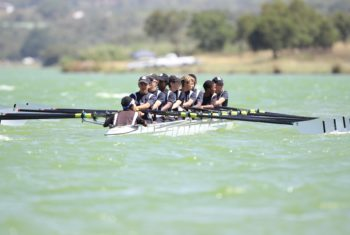 team rowing in unison